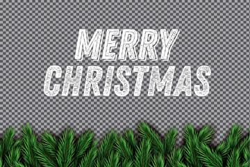 Fir Branch on Transparent Background. Merry Christmas.