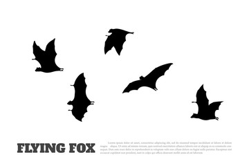 Black silhouette of a japanese flying fox on white background. Bat image. Animals of Japan