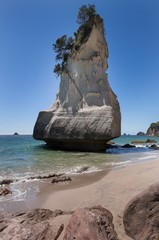 Poster Cathedral Cove Cathedral Cove Coromendal New Zealand
