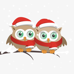 Couple of owls with Santa Claus hat on a branch