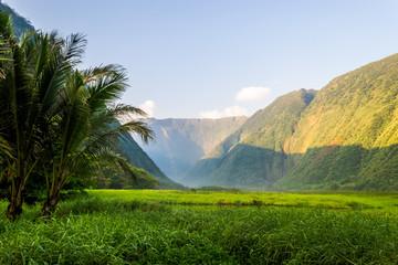 Valley in the mountains on Hawaiian Island