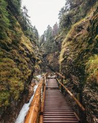 Stream in Janosikove Diery Gorge / Canyon in Mala Fatra National Park, Slovakia