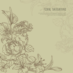 Handdrawn Floral Frame with text space