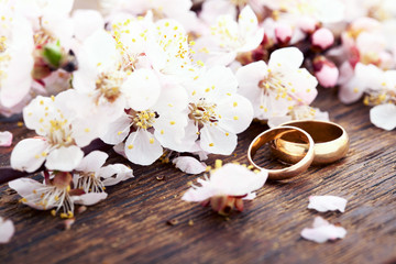 Wedding rings. Spring. Flowering branch on wooden surface.