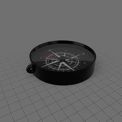 Toy compass