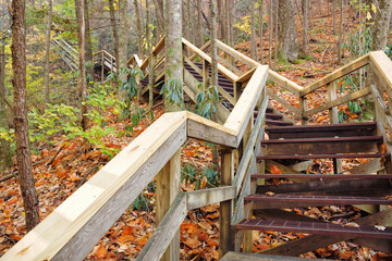 Outdoor Wooden Stairs Leading Upwards in Blue Ridge Mountains