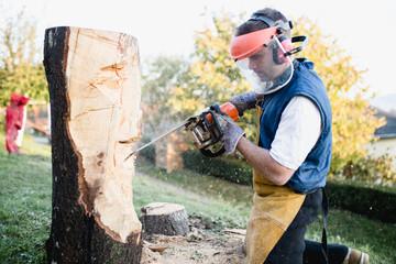 Wood artist sculptor artwork.