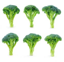 Fresh broccoli set isolated on white background