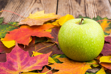 Green apple on background of autumn leaves