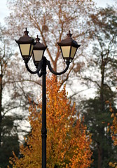 latarnia w parku jesienią
