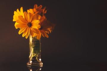 Flower in a Beaker