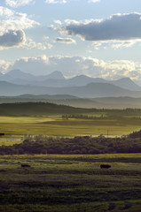 landscape of foothills and the mountains