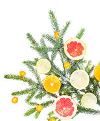 New Year and Christmas branch of spruce, decorated with fruits
