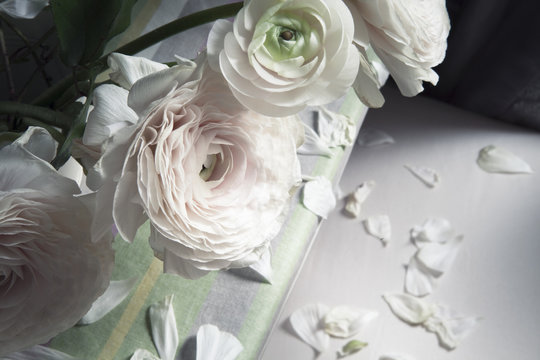 Withering white roses and petals