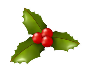 Christmas Time! Holly on White Background. Isolated Vector Illustration