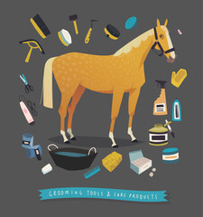 Horse grooming tools. Essential horse care products