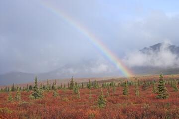 Rainbow in Alaska's Denali National Park