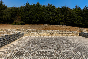 Ancient Roman mosaic in Conimbriga, one of the largest and the best preserved Roman settlements excavated in Portugal, classified as a National Monument in 1910.