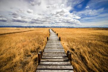 Trail in a Prairie
