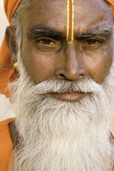 India, Rajasthan, Jaipur, portrait of a Holy man (Saddhu) in the old city area of Jaipur