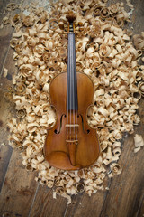 Hand-Crafted Violine . Still Life