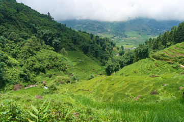 Spectacular views on valley with green rice terraces