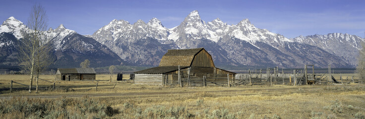 Barn in a field, Grand Teton National Park, Moose, Jackson Hole Valley, Wyoming, USA
