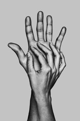 Detail of the hands of a couple. Black and white.