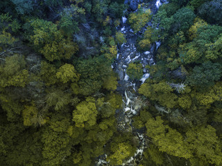 fall season, Autumn comes, Smoky Mountains National Park near Asheville, colorful, north carolina, USA