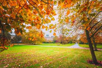 Fall color of Regent Park in London