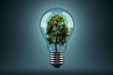 Ecology Concept. Green tree growing in light bulb.