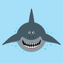 cartoon funny shark
