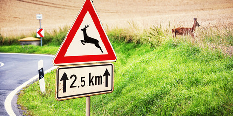 Spoed Fotobehang Ree Road Sign and Deer next to a Country Road, Germany