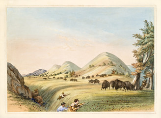 Buffalo hunt. Hunters Approaching in a ravine to organize an ambush. Old watercolor illustration By G. Catlin, Catlin's North American Indian Portfolio, Ackerman, New York, 1845