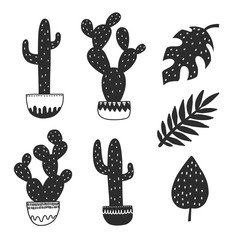 Cactus and plants. Hand drawn monstera drawing