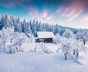 Picturesque winter sunrise in Carpathian village with snow cowered trees.