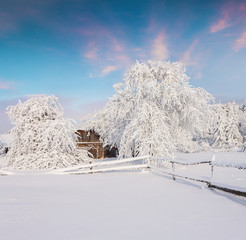 Winter fairytale, heavy snowfall covered the trees and houses