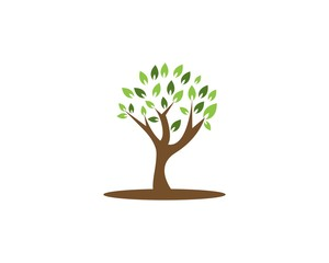 Tree icon concept of a stylized
