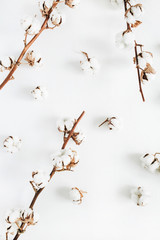 Cotton branches and buds pattern on white