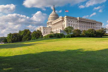 Washington DC, The United States Capitol on Capitol Hill is the home of the United States Congress and located in Washington D.C. Wall mural