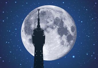 tour Eiffel - clair de lune - Paris -  nuit - symbole - sommet - monument - détail - parisien - voyage