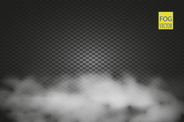 Fog or smoke isolated transparent special effect. White vector cloudiness, mist or smog background. Vector