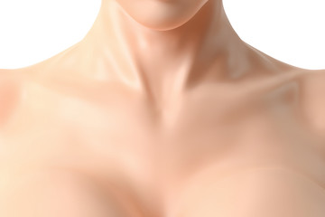 Beautiful female neck and cleavage