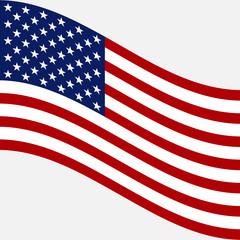 Flag of USA. Vector image of American flag
