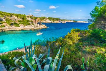 Wall Mural - View of  Cala Llombards, Mallorca Island, Spain