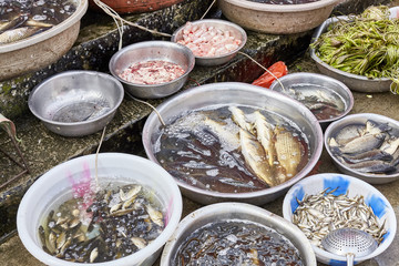 Fresh fish in bowls on a local street market, China