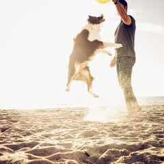 Caucasian man playing with dog at beach