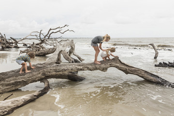 Caucasian by and girls examining driftwood on beach