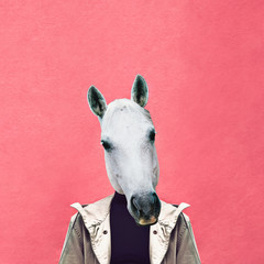 Contemporary art collage. Man horse on pink wall background. Jeans outfit