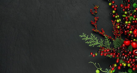 Christmas tree banches and red berries background Wall mural